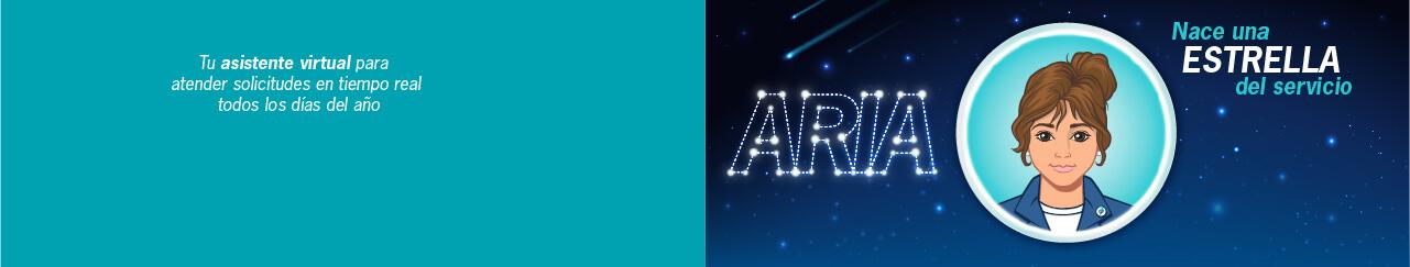 Aria - Chat Bancaribe